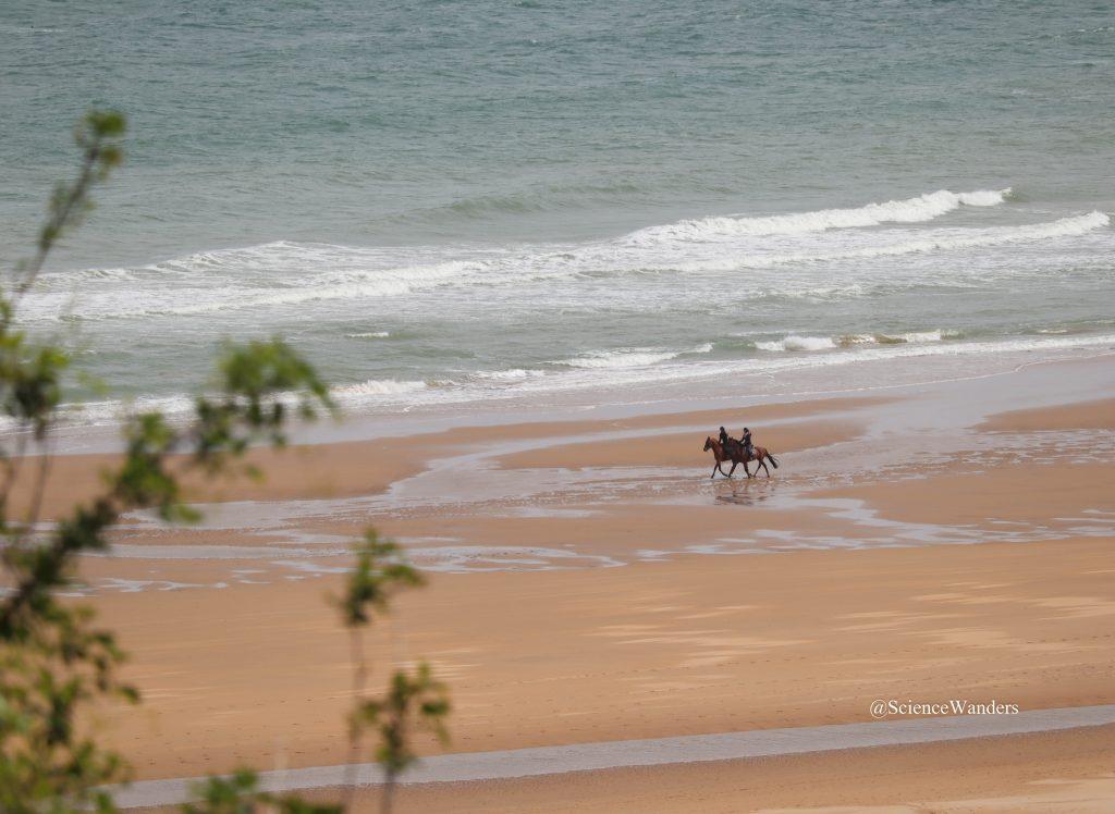 Horses gallop on Omaha Beach