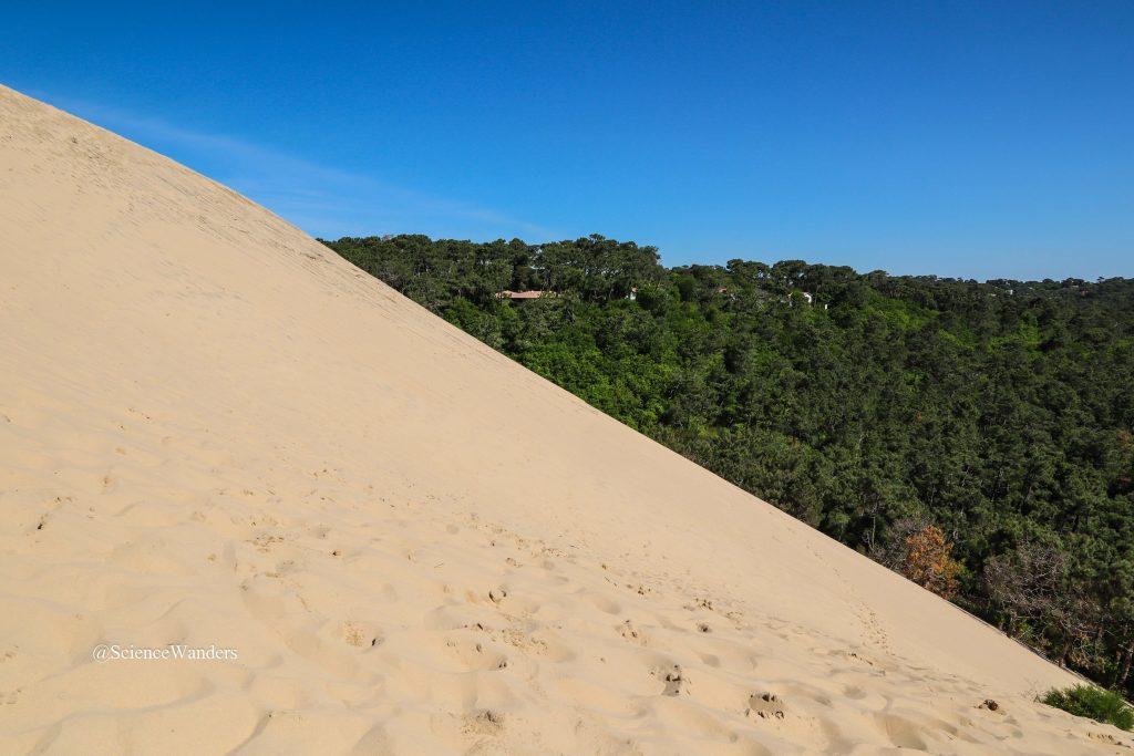 Dune du Pilat slope