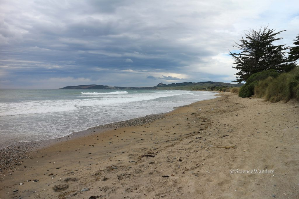 Oamaru beach