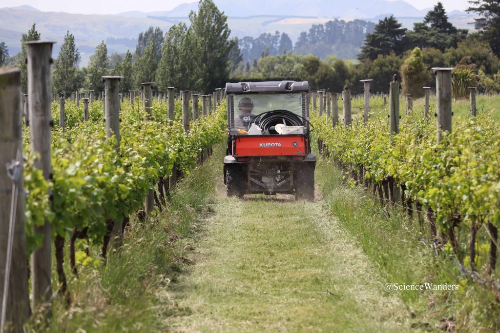 Vineyard irrigator, Waipara