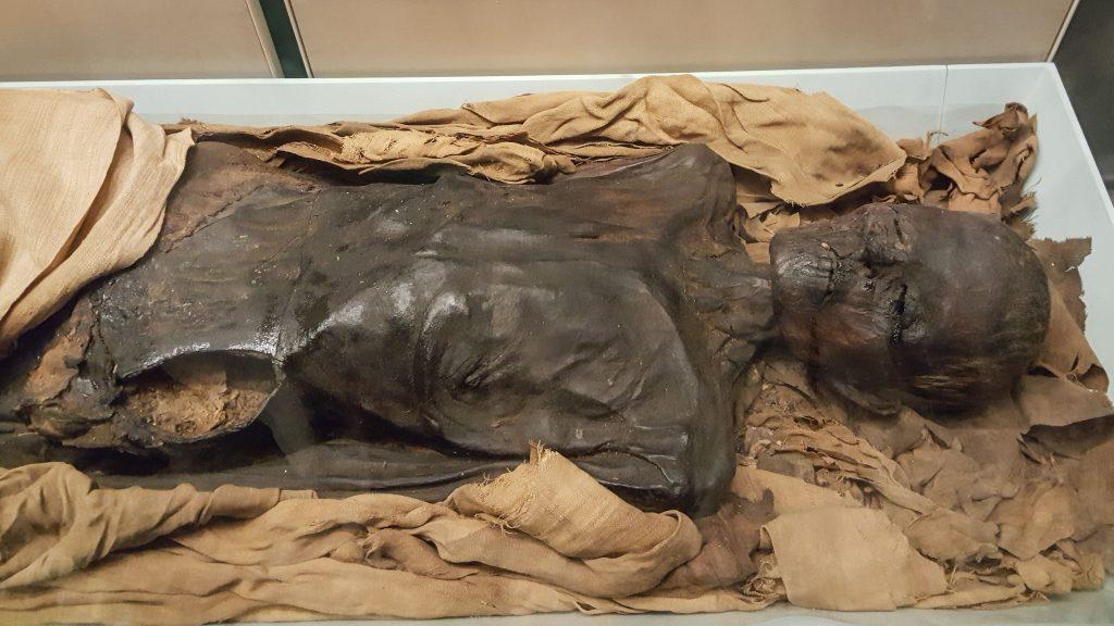 british museum mummy